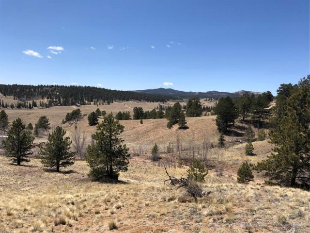 264 Green Whiskers Lane, Hartsel, CO 80449 (#2920342) :: The City and Mountains Group