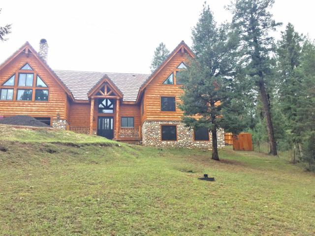 27945 Alabraska Lane, Evergreen, CO 80439 (MLS #2921212) :: 8z Real Estate