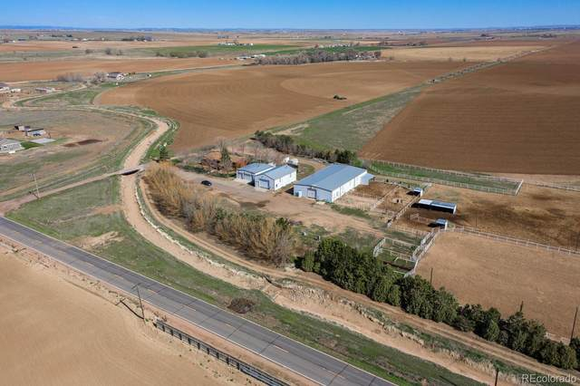 County Road 86, Pierce, CO 80650 (#2922602) :: The DeGrood Team