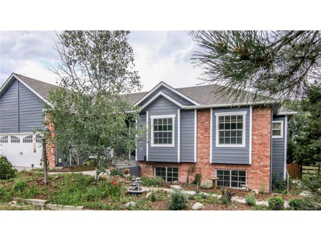 1620 Old Antlers Way, Monument, CO 80132 (MLS #2925931) :: 8z Real Estate