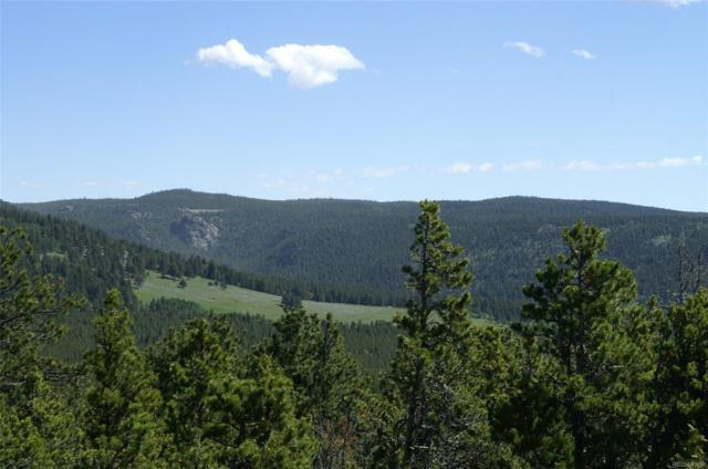 Tbd County Road 126, Nederland, CO 80466 (#2927115) :: Compass Colorado Realty