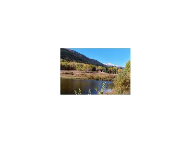 2182 Silver Valley Road, Silver Plume, CO 80476 (MLS #2930348) :: 8z Real Estate