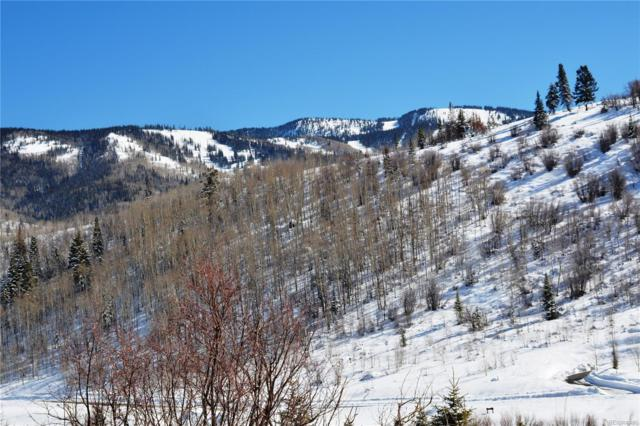 2655 Littlefish Trail, Steamboat Springs, CO 80487 (#2932013) :: The Pete Cook Home Group
