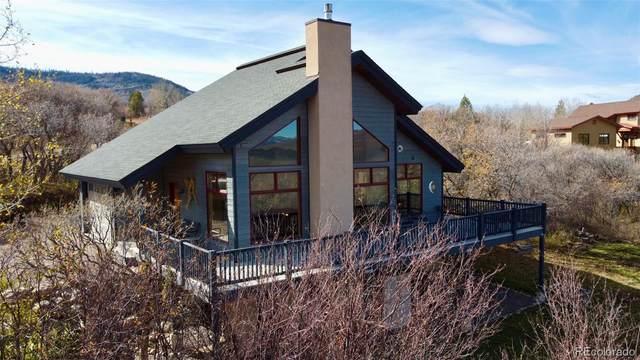 31080 Broken Talon Trail, Oak Creek, CO 80467 (#2934715) :: The DeGrood Team