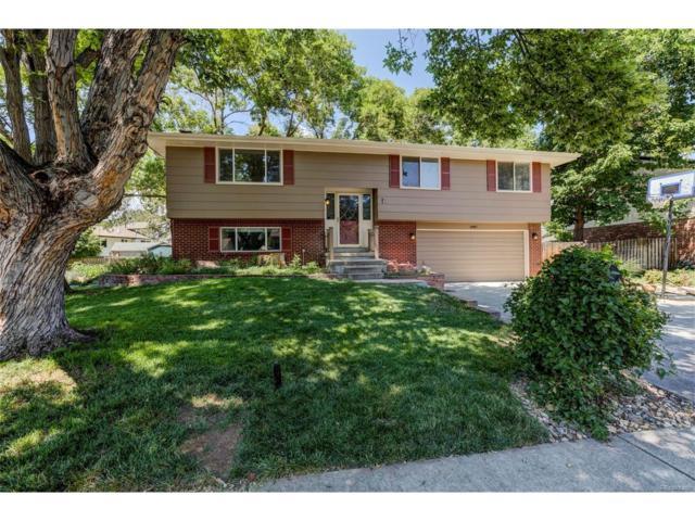 6987 Robb Street, Arvada, CO 80004 (MLS #2935180) :: 8z Real Estate