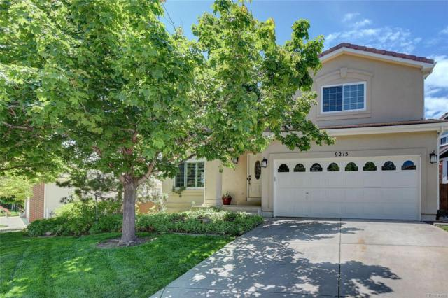 9215 Anasazi Indian Trail, Highlands Ranch, CO 80129 (#2942581) :: The HomeSmiths Team - Keller Williams