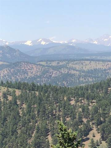 31585 Coal Creek Canyon, Golden, CO 80403 (MLS #2944212) :: 8z Real Estate