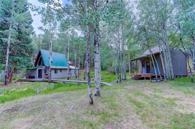 479 Deer Road, Evergreen, CO 80439 (#2944908) :: Kimberly Austin Properties