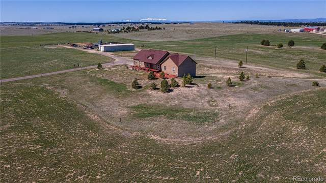 38955 County Road 29, Elizabeth, CO 80107 (#2945607) :: The DeGrood Team