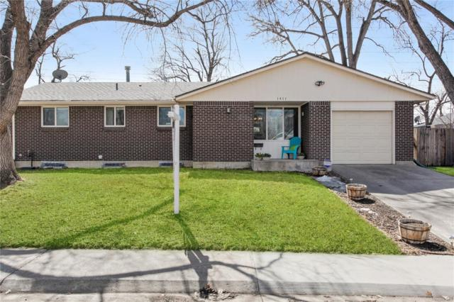 1411 S Magnolia Way, Denver, CO 80224 (#2946687) :: The Heyl Group at Keller Williams