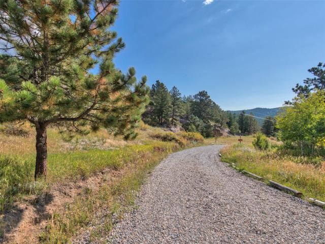 222 Hurricane Hill Drive, Nederland, CO 80466 (MLS #2947228) :: 8z Real Estate