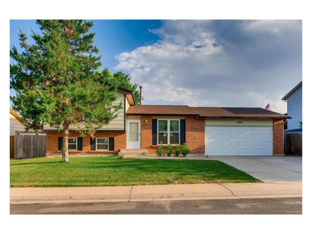 4242 E 91st Drive, Thornton, CO 80229 (MLS #2949541) :: 8z Real Estate