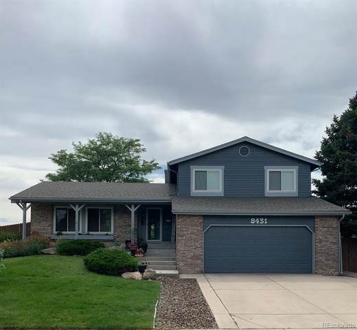 8431 S Willow Creek Street, Highlands Ranch, CO 80126 (MLS #2950199) :: 8z Real Estate