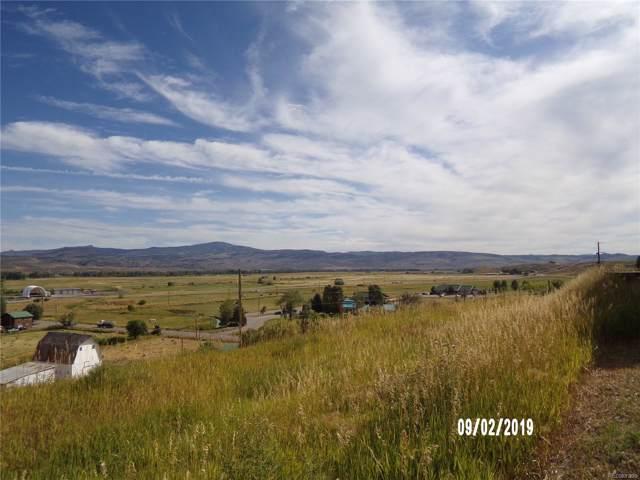 359 Vista Verde Drive, Hayden, CO 81639 (MLS #2951199) :: 8z Real Estate