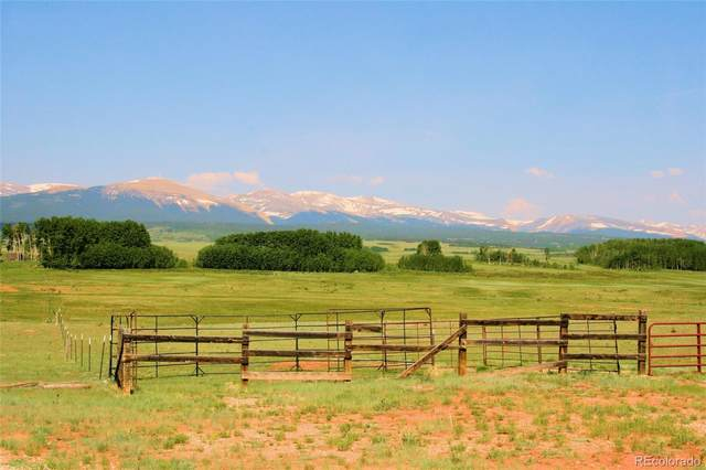 17913 Hwy 285 7, Fairplay, CO 80440 (MLS #2951788) :: Bliss Realty Group