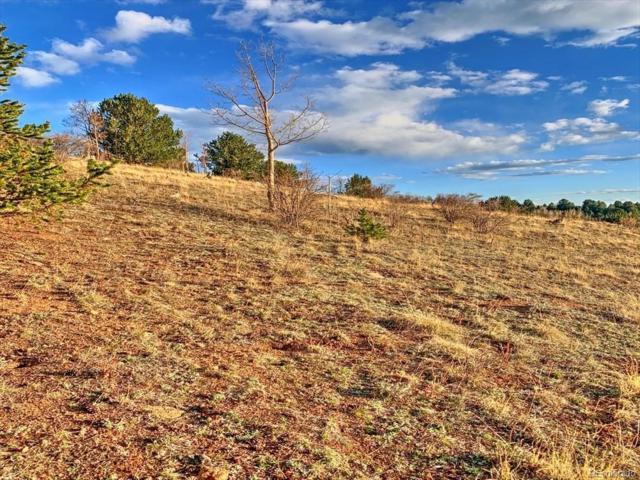 County 1 Road, Cripple Creek, CO 80813 (#2951949) :: The Gilbert Group