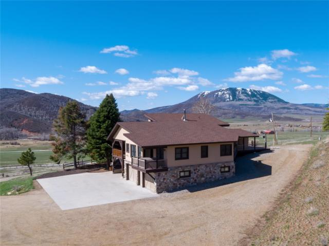 46750 County Road 129, Steamboat Springs, CO 80487 (#2953983) :: Bring Home Denver