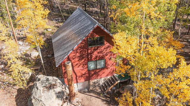 10297 E State Highway 82, Twin Lakes, CO 81251 (#2955447) :: The DeGrood Team