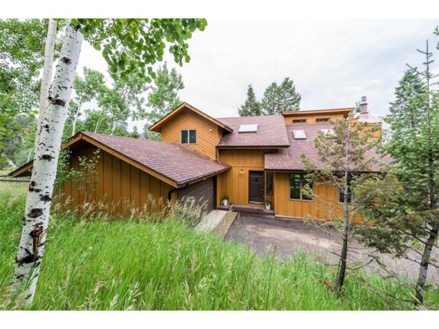 31823 Ponderosa Way, Evergreen, CO 80439 (MLS #2956265) :: 8z Real Estate