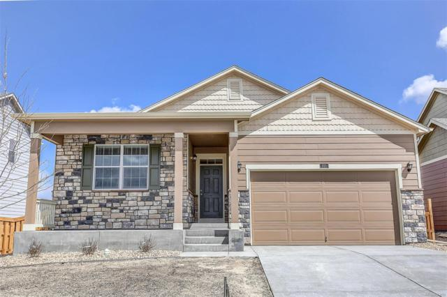 5999 Point Rider Circle, Castle Rock, CO 80104 (#2957489) :: The DeGrood Team