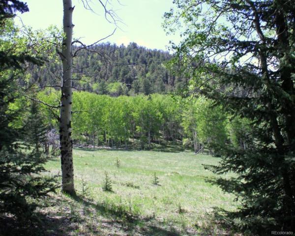 369 Lone Eagle, Westcliffe, CO 81252 (#2957990) :: Hometrackr Denver