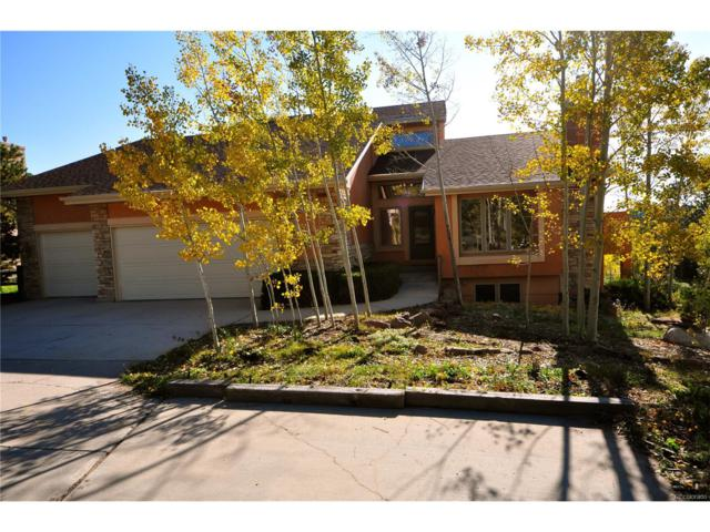 18603 Honey Suckle Way, Monument, CO 80132 (#2958543) :: The Galo Garrido Group
