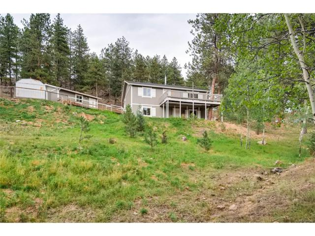235 Sleepy Hollow Drive, Bailey, CO 80421 (MLS #2961116) :: 8z Real Estate