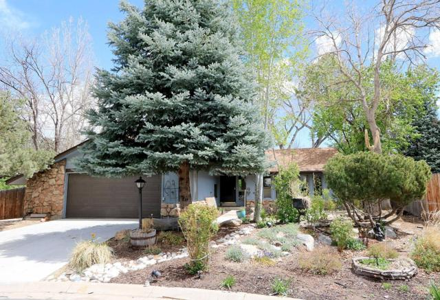9960 Winona Street, Westminster, CO 80031 (#2965501) :: The Heyl Group at Keller Williams