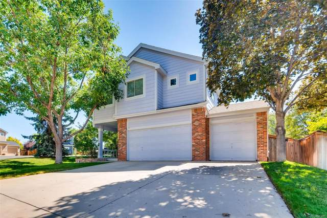 8736 Goosander Way, Littleton, CO 80126 (#2965606) :: The DeGrood Team
