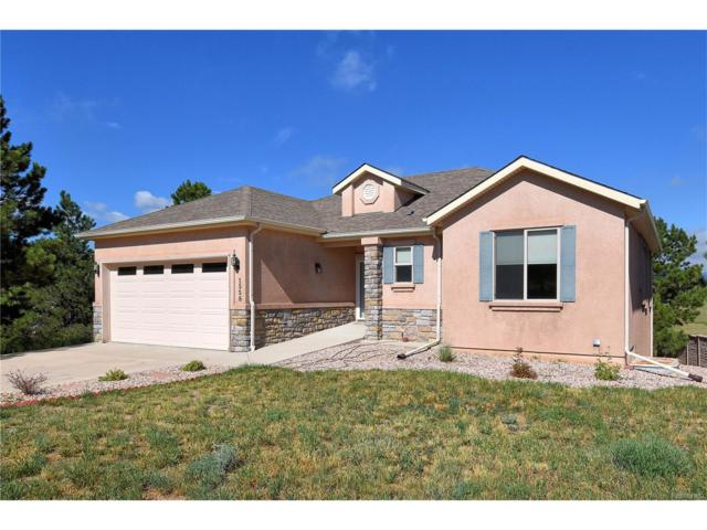 1558 Piney Hill Point, Monument, CO 80132 (MLS #2966545) :: 8z Real Estate