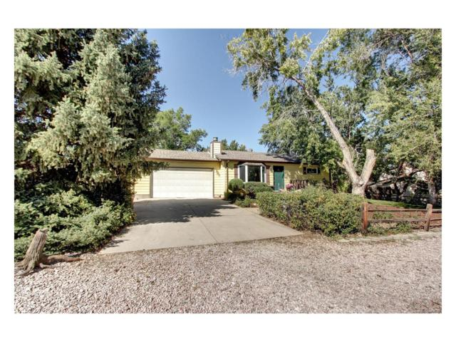 8531 S Ammons Street, Littleton, CO 80128 (#2968306) :: The Sold By Simmons Team