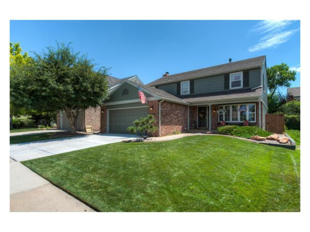 8862 Sundrop Way, Highlands Ranch, CO 80126 (MLS #2968638) :: 8z Real Estate