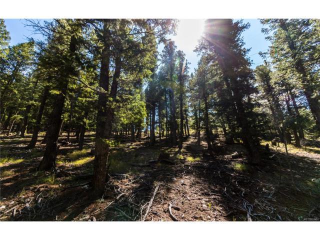 1180 Elk Valley Drive, Evergreen, CO 80439 (MLS #2969648) :: 8z Real Estate