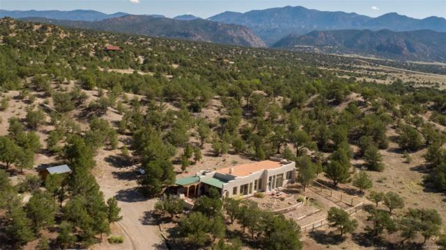 11855 County Road 251A A, Salida, CO 81201 (#2977101) :: The Galo Garrido Group