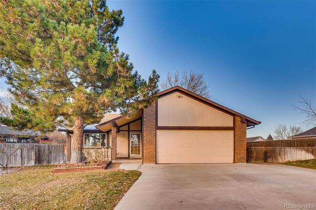 4767 E 128th Court, Thornton, CO 80241 (MLS #2977849) :: Bliss Realty Group