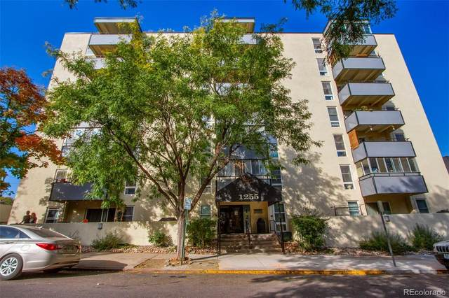 1255 N Ogden Street #207, Denver, CO 80218 (#2978240) :: Realty ONE Group Five Star