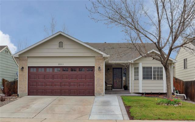 2853 W 126th Avenue, Broomfield, CO 80020 (#2978660) :: Colorado Home Finder Realty