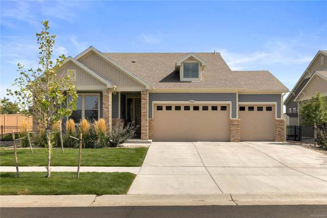 5506 Himalaya Court, Denver, CO 80249 (#2981384) :: The DeGrood Team