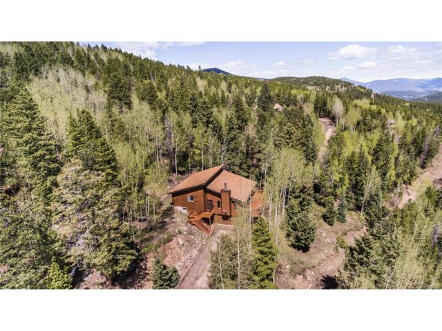 10726 Timothys Drive, Conifer, CO 80433 (MLS #2986529) :: 8z Real Estate