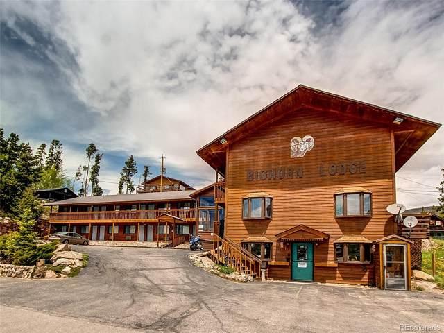 613 Grand Avenue, Grand Lake, CO 80447 (#2988830) :: The HomeSmiths Team - Keller Williams