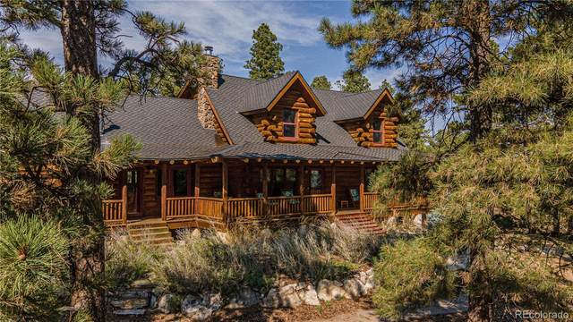 11511 E Palmer Divide Road, Larkspur, CO 80118 (#2989962) :: Chateaux Realty Group