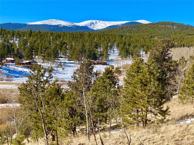 417 Elk Creek Drive, Bailey, CO 80421 (#2994754) :: Colorado Home Finder Realty