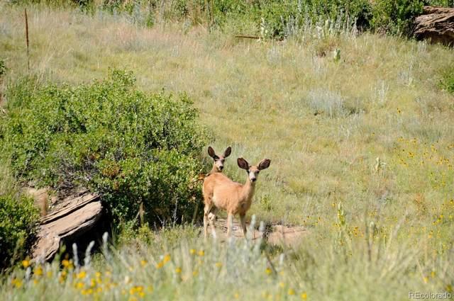 22066 Amethyst Road, Deer Trail, CO 80105 (#2994819) :: The Colorado Foothills Team   Berkshire Hathaway Elevated Living Real Estate