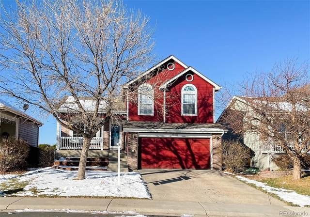 16159 Peregrine Drive, Parker, CO 80134 (#2995574) :: Realty ONE Group Five Star