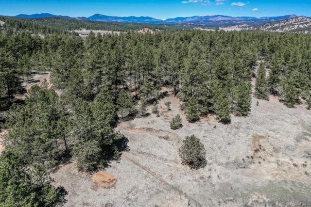 203 W Arrowhead Road, Florissant, CO 80816 (#2995575) :: Mile High Luxury Real Estate
