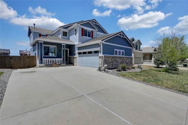 211 Ellendale Street, Castle Rock, CO 80104 (#2996731) :: Briggs American Properties