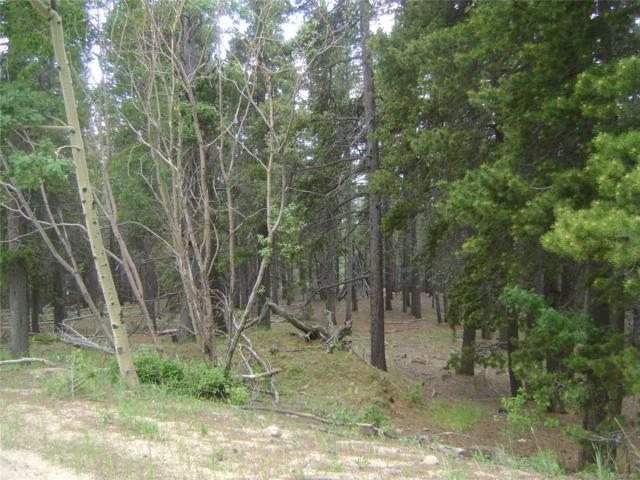 11003 Conifer Mountain Road, Conifer, CO 80433 (MLS #2998902) :: 8z Real Estate