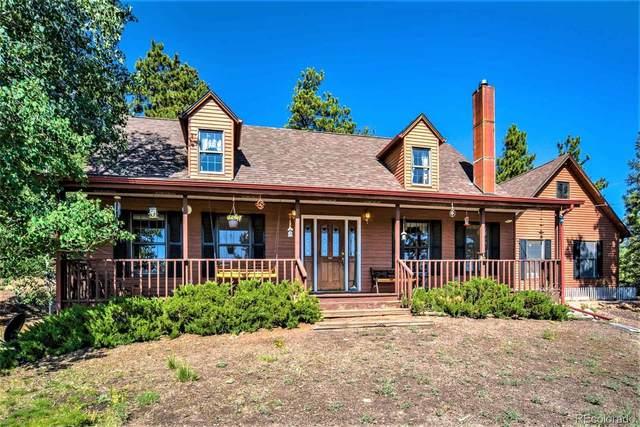 511 Cougar Lane, Guffey, CO 80820 (#3000560) :: Mile High Luxury Real Estate