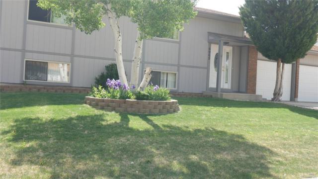 6965 Corn Tassle Drive, Colorado Springs, CO 80911 (#3001190) :: The Galo Garrido Group
