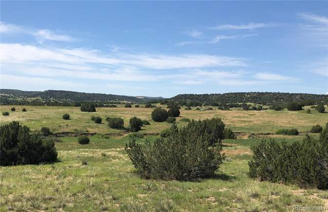 0 Abbey Road, Pueblo, CO 81004 (#3004960) :: Own-Sweethome Team